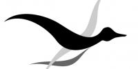 Lookslike.ca_Logo